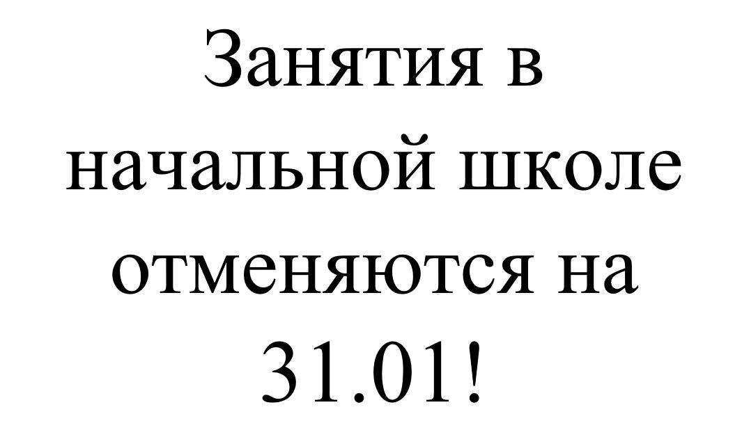 Отмена занятий в начальной школе на 31.01.2020